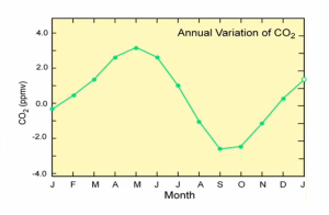 yearly_variation
