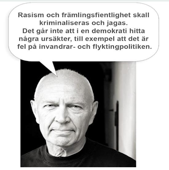 rasism_främlingsfientlighet.png